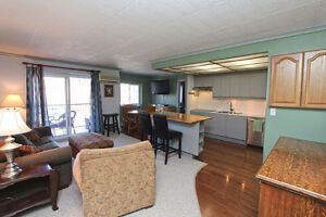 Beautiful Condo for Rent in Downtown Grimsby