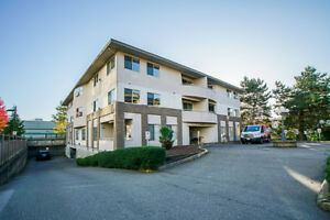 204-19130 Ford Rd, Pitt Meadows