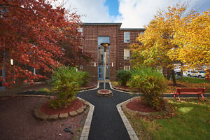 Absolutely Beautiful- 2 Bdrm Condo- 5 Appliance- complete reno St. John's Newfoundland image 9