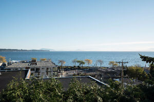 Build Your Ocean-View Dream Home Or Enjoy This Updated Home! Downtown-West End Greater Vancouver Area image 10