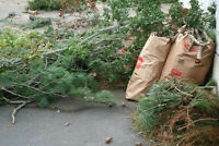 YARD WASTE REMOVAL & BRANCHES/TWIGS REMOVAL