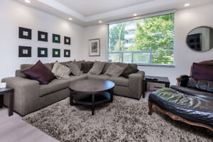 1 bedroom :newly renovated   West End November 1-March 31