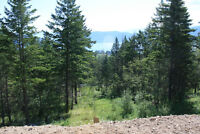 LOT FOR SALE - Lot 162 Westshore Rd., Vernon