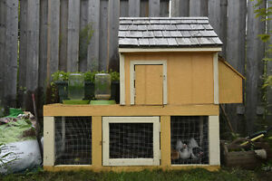 Cute bantam chicken coop perfect for backyard