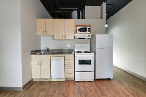 Private, Safe, Central 1 Bed Condo - Perfect for Students Edmonton Edmonton Area image 10