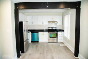 GORGEOUS, NEW 2 BEDROOM APARTMENT (Sherman and Cannon)