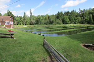 Cabin and fish farm on 8 acres! Kingston Kingston Area image 4