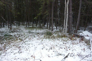 Vacant Lot in Cranberry Portage