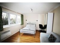 Responsible Professional Seeking Large Double Bedroom / Studio in South East London.