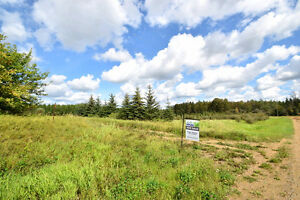 4 Acre lot, Grassland.. corner lot just out of town