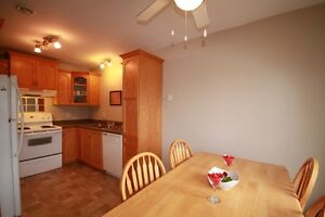 24 Seaborn Street | Potential income | Location! St. John's Newfoundland image 3