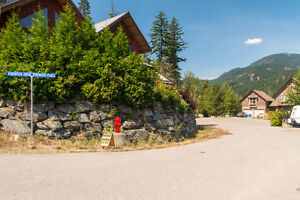 Excellent building lot on the Pemberton Plateau