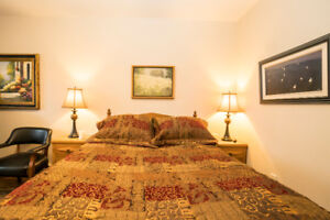 Queen Comforter with Bed Skirt and Pillow Shams