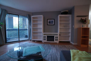 1 Bed 1 Bath New West Apartment for Rent (available now)