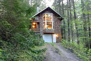 Mt. Baker Lodging - Cabin #25 - HOT TUB,WIFI,BBQ,PETS OK, SLP-6!