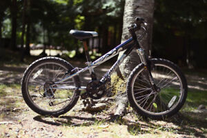 Kids Specialized HotRock 20