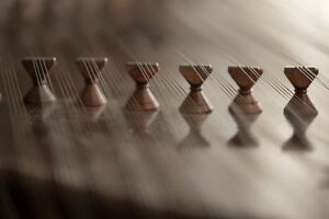 Santoor, a great gift for new year!!!!