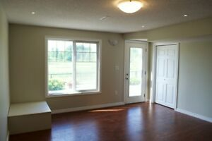Nice walkout basement (2 bed rooms) for rent