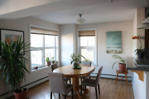Room for rent in beautiful south end apartment - March