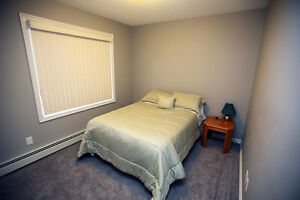 NEWER 2 BED 2 BATH CONDO Edmonton Edmonton Area image 6