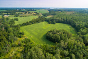Exceptional 96.7 Acre Lot with Mixed Zoning - 4081 Monck Road