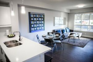 OPEN HOUSE Jan 21 & 22 11am - 2pm 1 BD - FEB RENT FREE! Cambridge Kitchener Area image 3