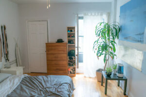 OPEN-HOUSE SUN, AUG 19 (1-4PM) - 1 BED LOFTS AVAIL AUG & SEP!
