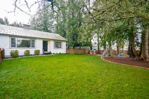3 bedroom + loft home available for rent (Maple Ridge)