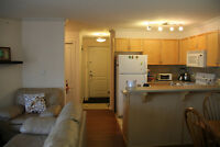 Downtown 2 Bedroom Condo Ideal Location (100Ave+104St) for Rent