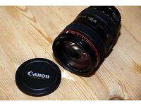 Canon 24-105L lens