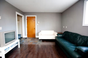 summer apartment for sublet rental (Utilities Included)