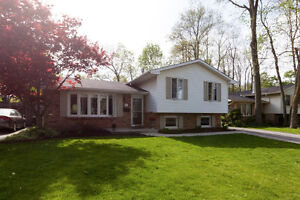 OPEN HOUSE TODAY (Monday) 2-4pm BYRON - 515 Belvedere Ave.