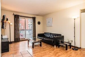 5 1/2 apartment for rent in the heart of the Plateau-Mont-Royal