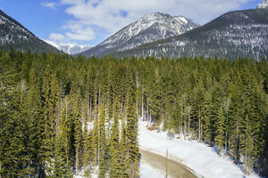 The last 5 acre freehold lot at Kootenay Ridge for sale