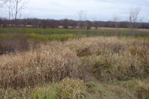 3 Lots for sale near The Pas at 2.4 Acres each