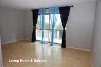 Clean and Quiet 4 Bedroom Bi-Level Duplex