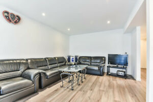 Beautiful Walkout Basement for Rent