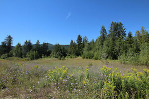 Salmon Arm - 8.9 Acre Residential/Business Lot