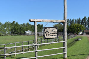 38.38 Acres for your horses to love! A Must see!