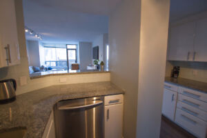 Modern, stylish 2bed/2 bath with balcony downtown living