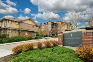 * 1 Bedroom /Full Bath condo in 3rd flr with underground parking