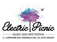 Electric picnic
