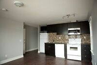 Beautifully Rebuilt 2 Bedroom w/ En Suite Laundry & Parking
