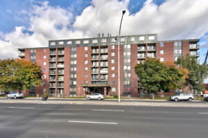 Beautiful 1.5 in Montreal Nord // All Included