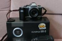 Olympus EM-10 with Panasonic 12-32mm mega OIS lens.