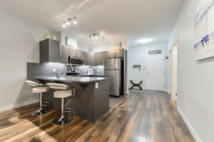 Large Downtown Condo with Underground Stall