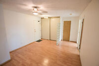 Furnished 2 Bedroom Unit For Rent (Utilities Included)