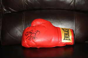 "Excellent condition Boxing Andre ""S.O.G"" Ward signed 12 oz glove"