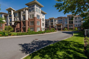 Beautifully Furnished and Fully Equipped Condos Move In Ready!