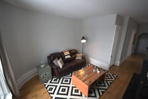 OPEN AND BEAUTIFUL APARTMENT IN DOWNTOWN BROCKVILLE